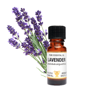 Lavender 50-52 High Altitude 10ml